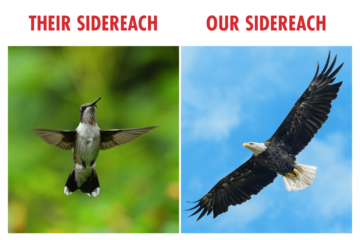 image analogy of sidereach to wingspans of hummingbird and eagle